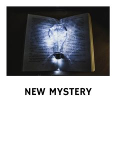 NEW MYSTERY BOOKS